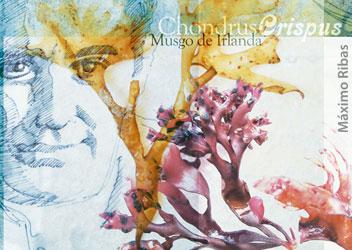 Ilustración sobre Ferran Adria realizada por Máximo Ribas