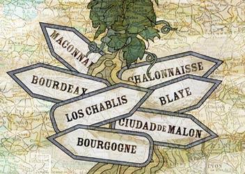 Ilustración de vinos low cost, buenos y baratos en Francia